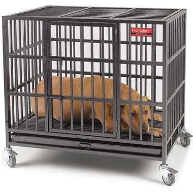 [**PROSELECT EMPIRE DOG CAGE REVIEW!] BEST PROSELECT ...
