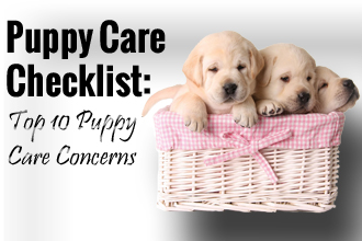 Puppy Care Checklist