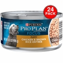 Purina Pro Plan Focus - Chicken & Brown Rice Entrée Canned Puppy Food (24x5.5oz)