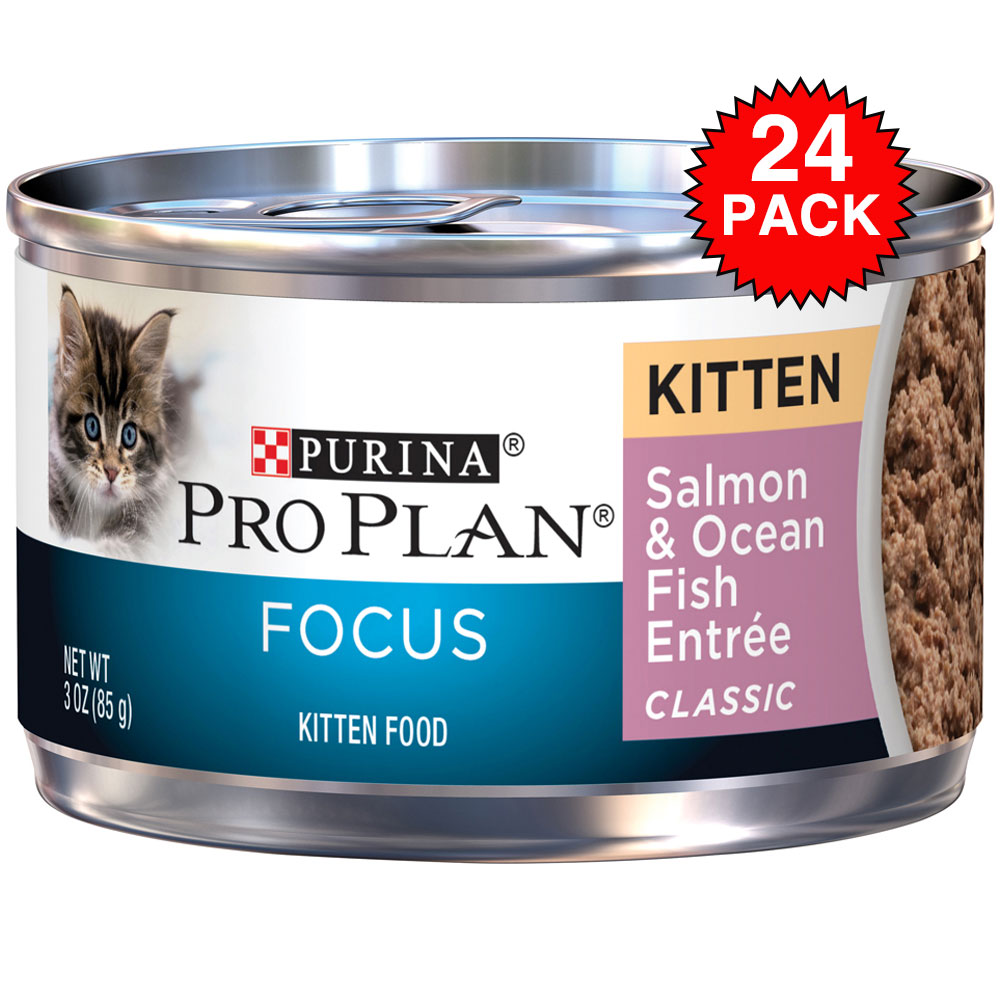 Purina Pro Plan Focus - Salmon & Ocean Fish Entrée Canned Kitten Food (24x3oz)