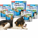 Purina® DentaLife™