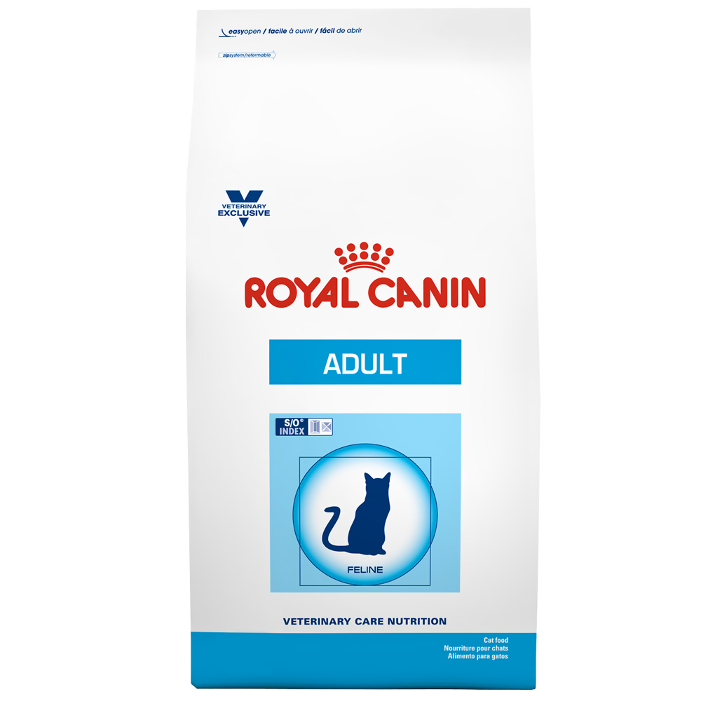 ROYAL CANIN Feline Adult Dry (22 lb)