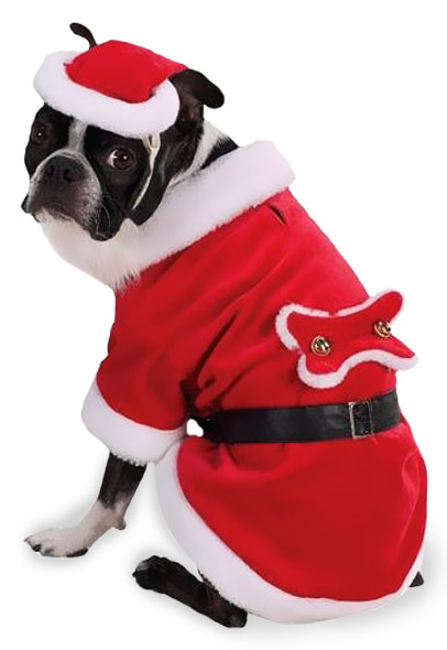 Santa Paws Dog Costume - MEDIUM