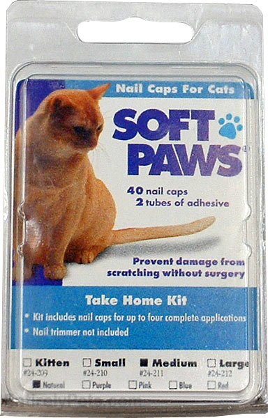 Soft Paws for Medium Cats