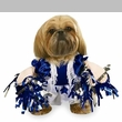 Spirit Paws Dog Costume - SMALL
