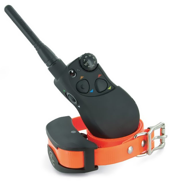 SportDog Remote Training