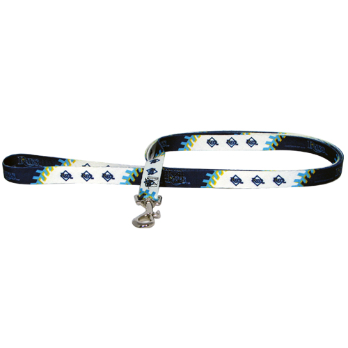 Tampa Bay Rays Dog Collars & Leashes