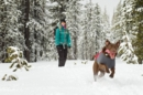 The Best Warm Dog Coats to Protect Against Winter & Cold Weather