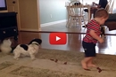 This Adorable Kid Learns How to Chase His Tail From His Canine Friend!