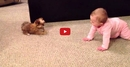 This Conversation Between a Baby and a Dog is TOO CUTE!!