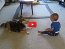 This Laughing Baby and Playful Dog is Guaranteed to Put a Smile on Your Face!