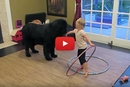This Little Girl Is Trying To Teach Her Dog To Hula Hoop