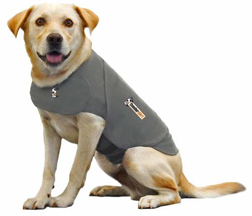 ThunderCap | Thundershirt Dog Anxiety Solution