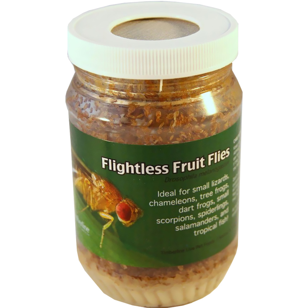 Timberline Live Pet Food - Fruit Flies