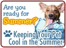 Tips For Keeping Your Pet Cool in the Summer