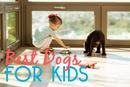 Top 5 Best Dog Breeds for Kids