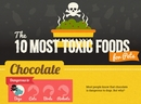 Toxic Food for Pets [Infographic]