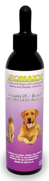 Uromaxx for Cats and Dogs