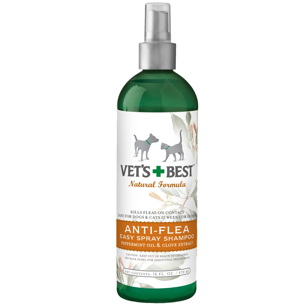 Best Natural Anti Ant