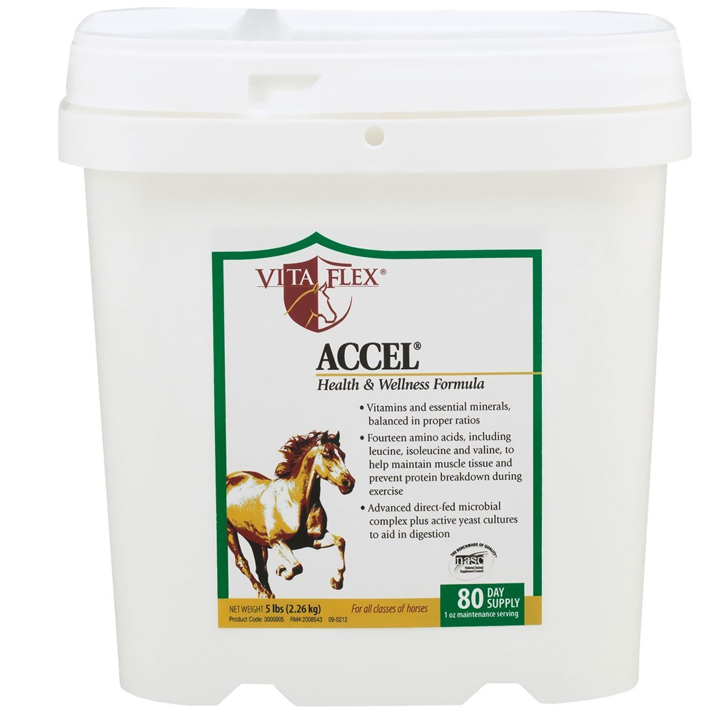 Vita Flex Horse Supplement