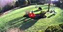 Watch These Brave Bulldogs Keep A Black Bear At Bay! You Won't Believe It!