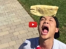 Watch These Humans Hilariously Try to Catch Food Like Dogs and Totally Fail!