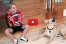 Watch This Dog React Hilariously To This Kid's Music