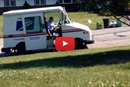 Watch What Happens When This Weimaraner Runs Up To The Mailman