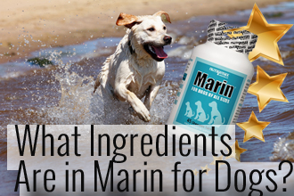 What Ingredients Are Used in Marin for Dogs?