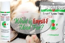 What is Enisyl-F Used For?