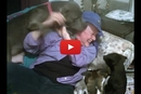 When Grandma Comes Over, This Dog & Her Puppies Can't Control Their Excitement!