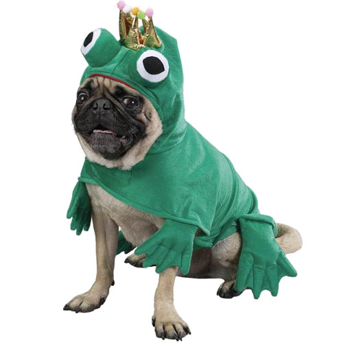 Zack & Zoey Prince of Frogs Costume