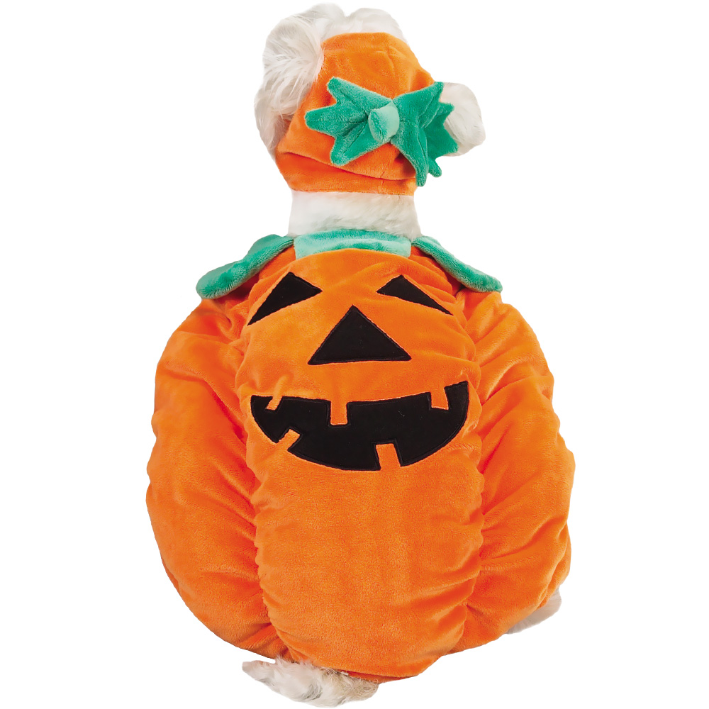 zack zoey pumpkin pooch costume small - Small Halloween Costumes