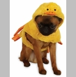 Zack & Zoey Quakers Duck Costume
