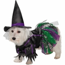 Zack & Zoey Scary Witch Dog Costume - Small