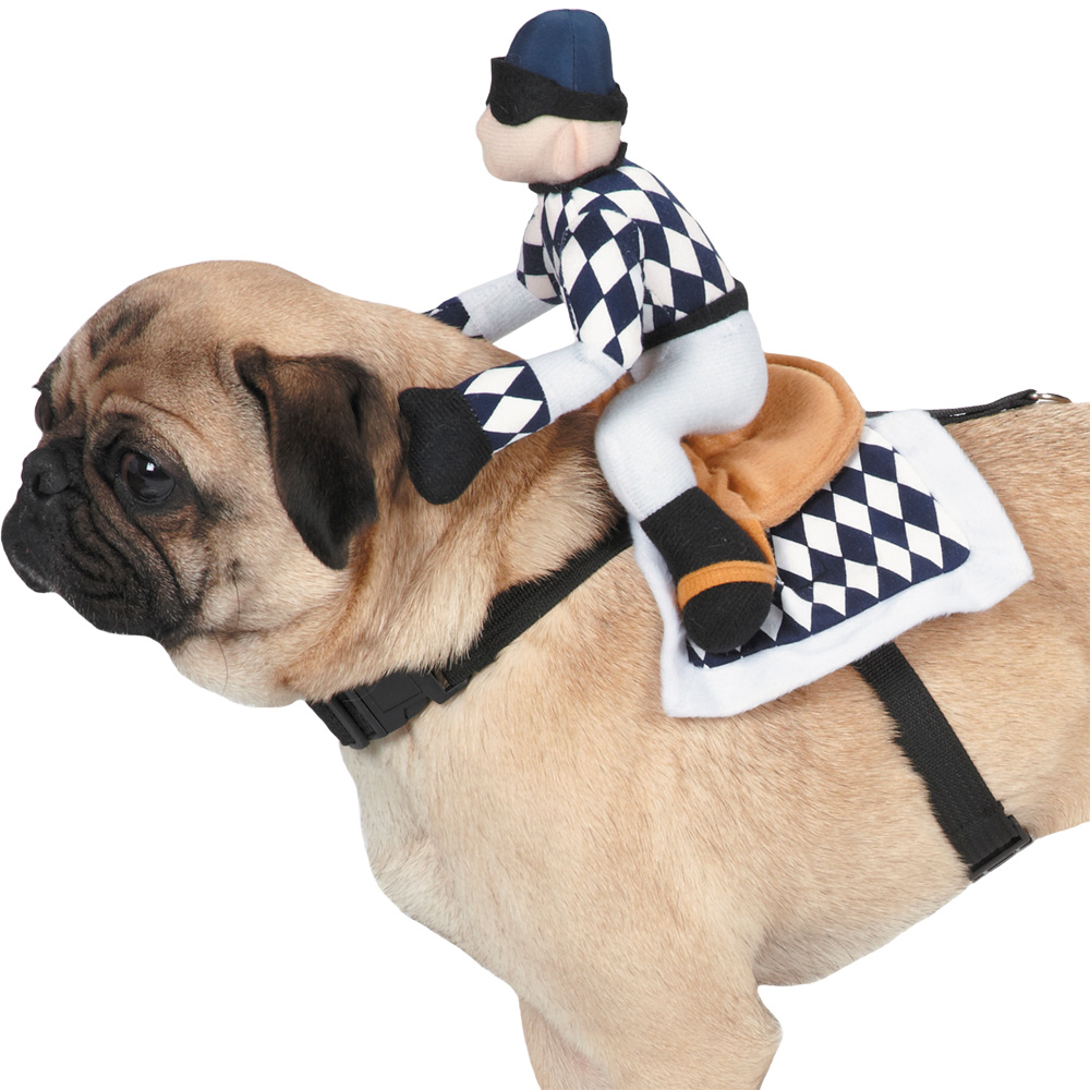 zack zoey show jockey saddle costume medium pet house jockey plaza lima peru pet house jockey plaza telefono