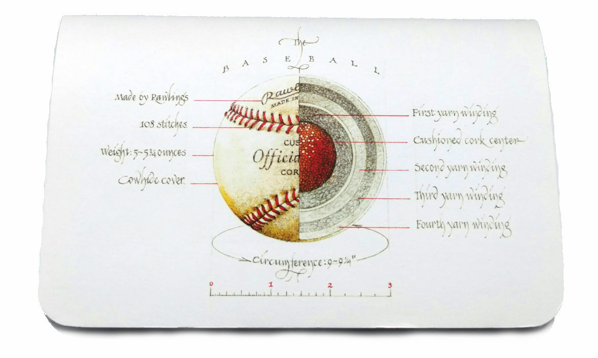 Anatomy of a Baseball Pocket Notebooks