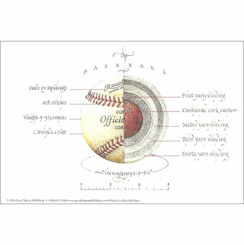 """Anatomy of Baseball"" 6x9 Print"
