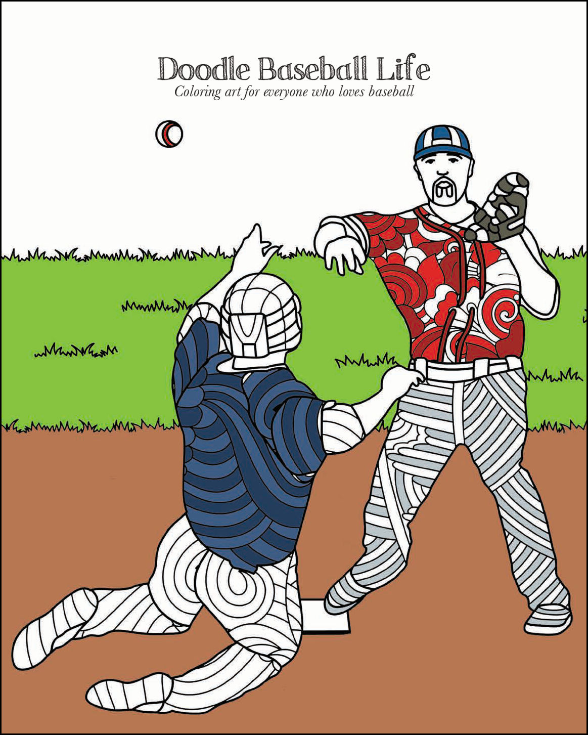Baseball Books for Adults