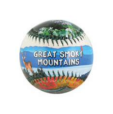 Great Smoky Mountains Baseball