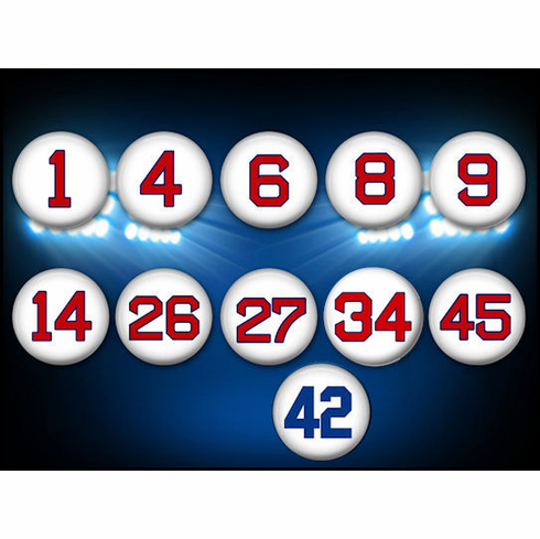 Red Sox Retired Numbers Set of 11 Collectible Button Pins