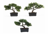 """12"""" Bonsai Silk Plant Collection (Set of 3) in Green - Nearly Natural - 4121"""