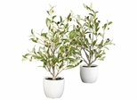 """18"""" Olive Silk Tree with Vase (Set of 2) - Nearly Natural - 4774-S2"""