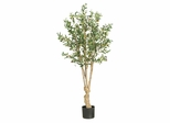 5' Olive Silk Tree in Green - Nearly Natural - 5258