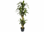 5' Yucca Silk Plant - Nearly Natural - 6100
