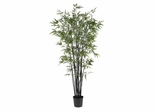 6.5' Black Bamboo Silk Tree in Green - Nearly Natural - 5277