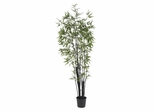 6' Black Bamboo Silk Tree in Green - Nearly Natural - 5164
