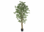 6' Japanese Maple Silk Tree in Green - Nearly Natural - 5297