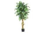 6' Palace Style Ficus Silk Tree in Green - Nearly Natural - 5216