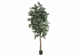 6' Smilax Tree in Green - Nearly Natural - 5267